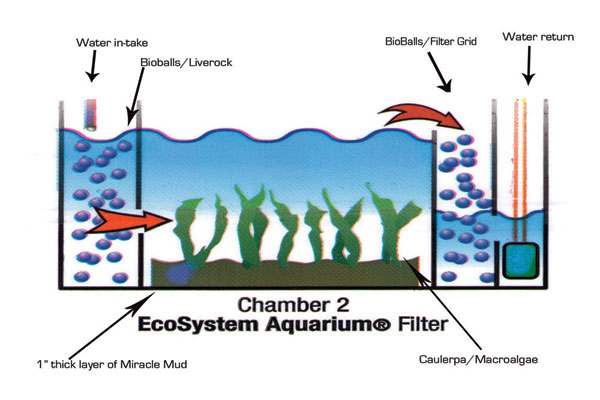 filter_chamber_setup